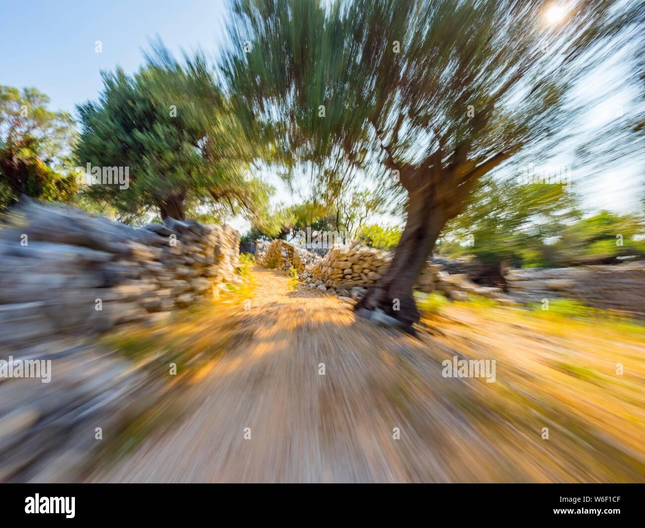 Croatia Lun island Pag - running in nature Stock Photo