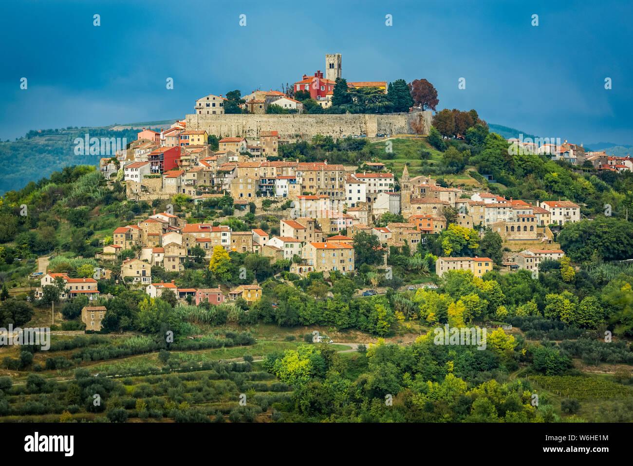 Vineyards surrounding the hilltop medieval town of Motovun; Motovun, Istria, Croatia Stock Photo