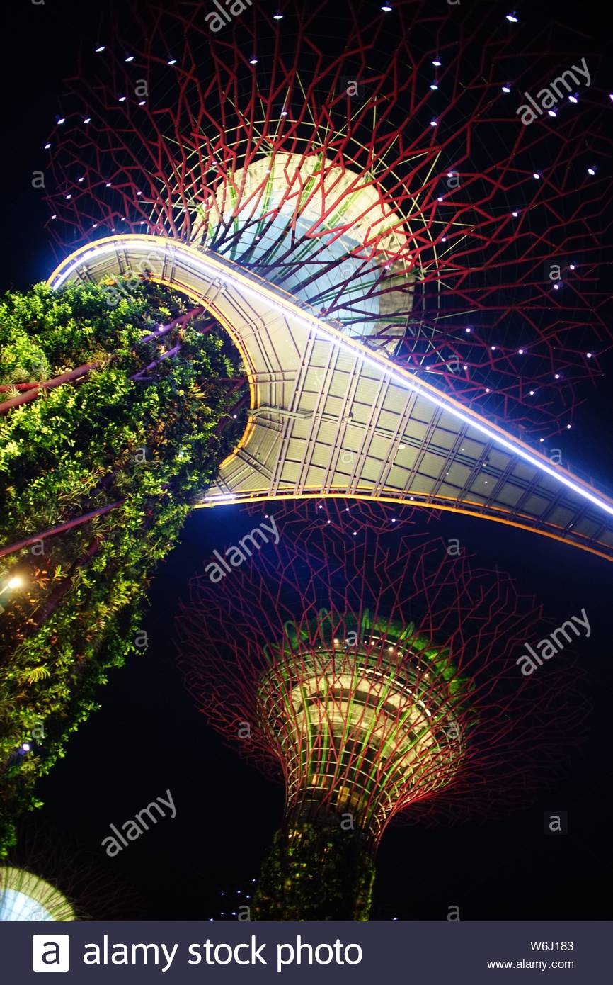 Looking up a spire covered in greenery with a bridge half way up. Stock Photo