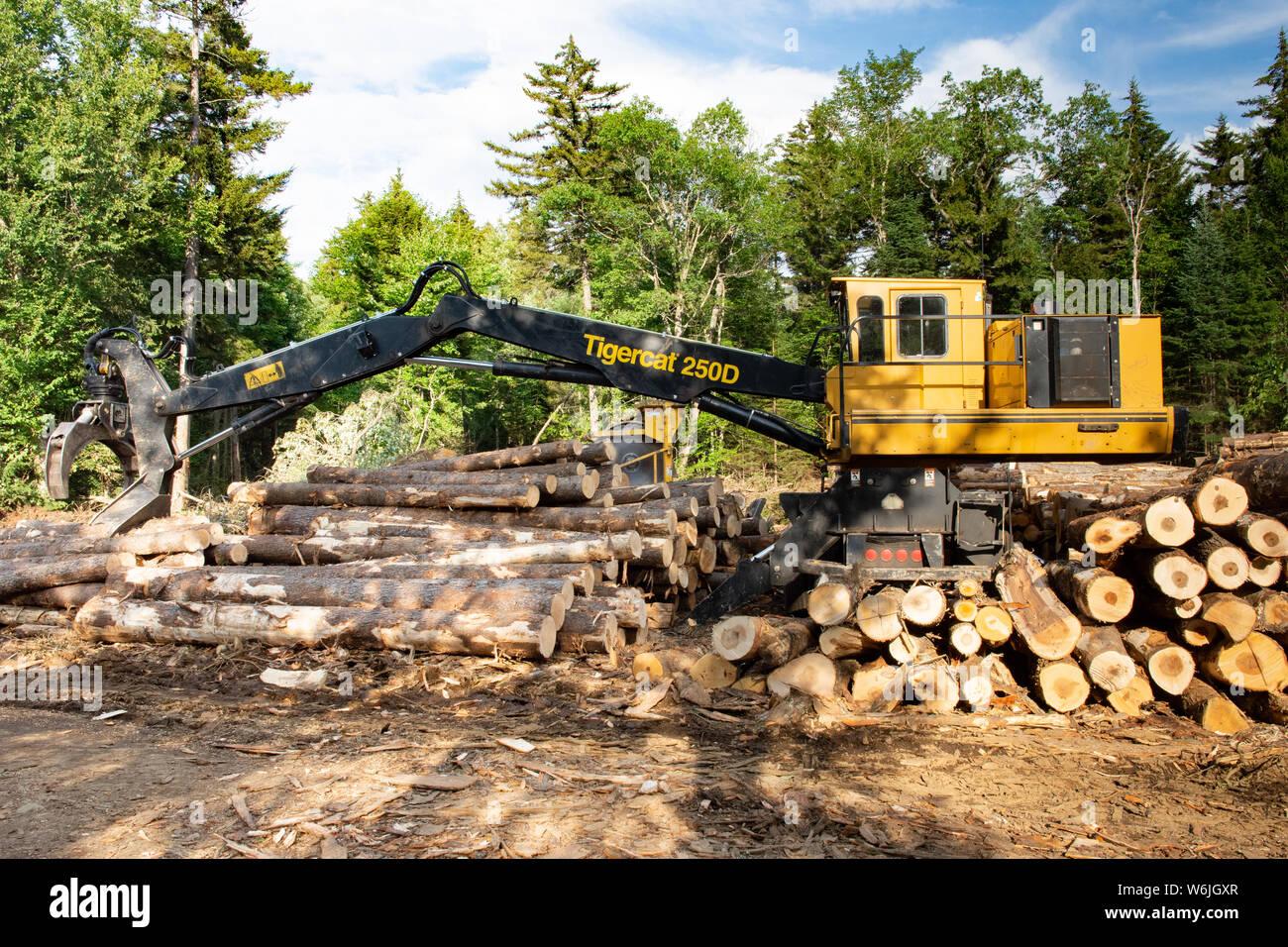 Log Saw Stock Photos & Log Saw Stock Images - Alamy
