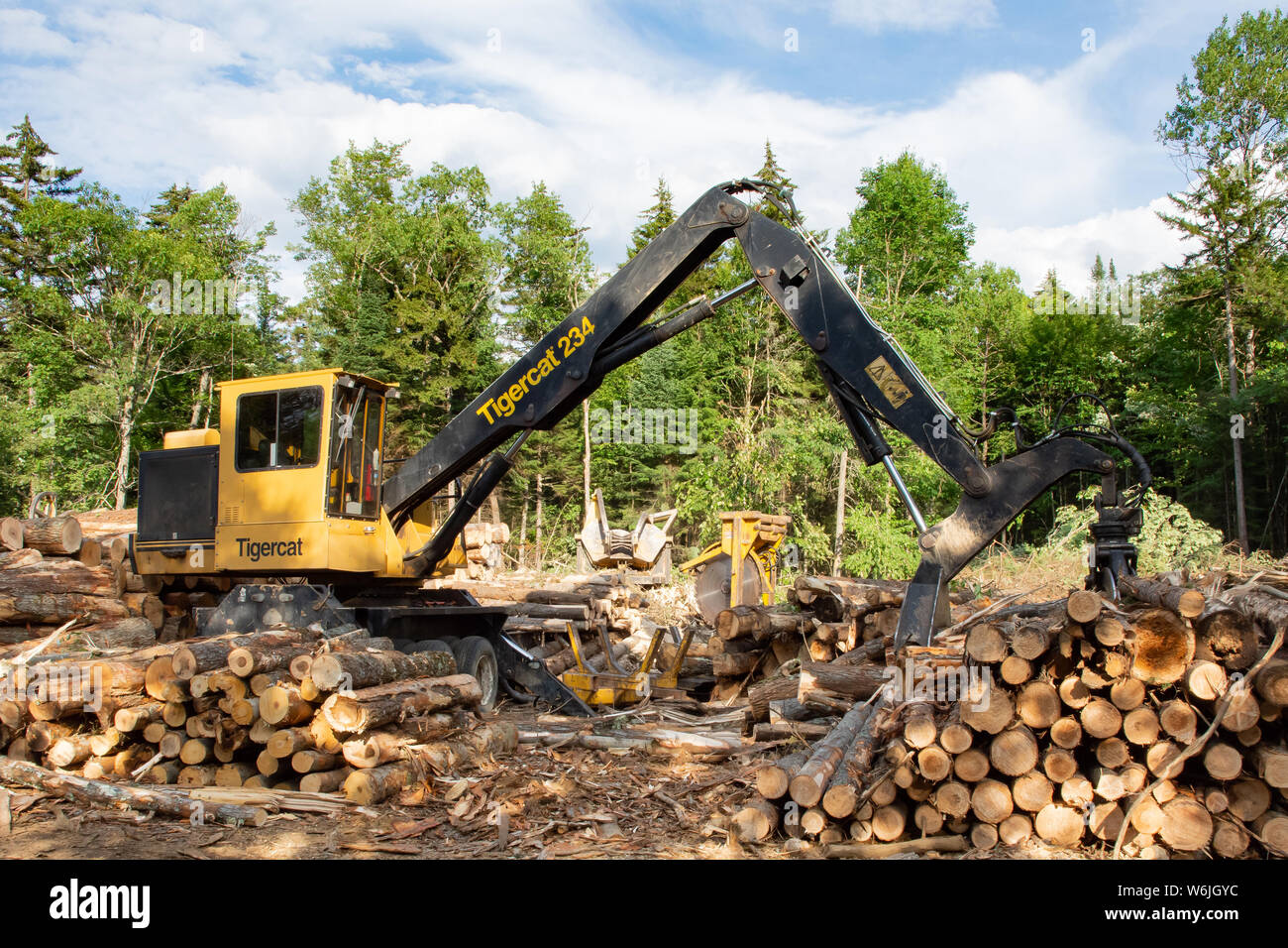 Log Saw Stock Photos & Log Saw Stock Images - Alamy