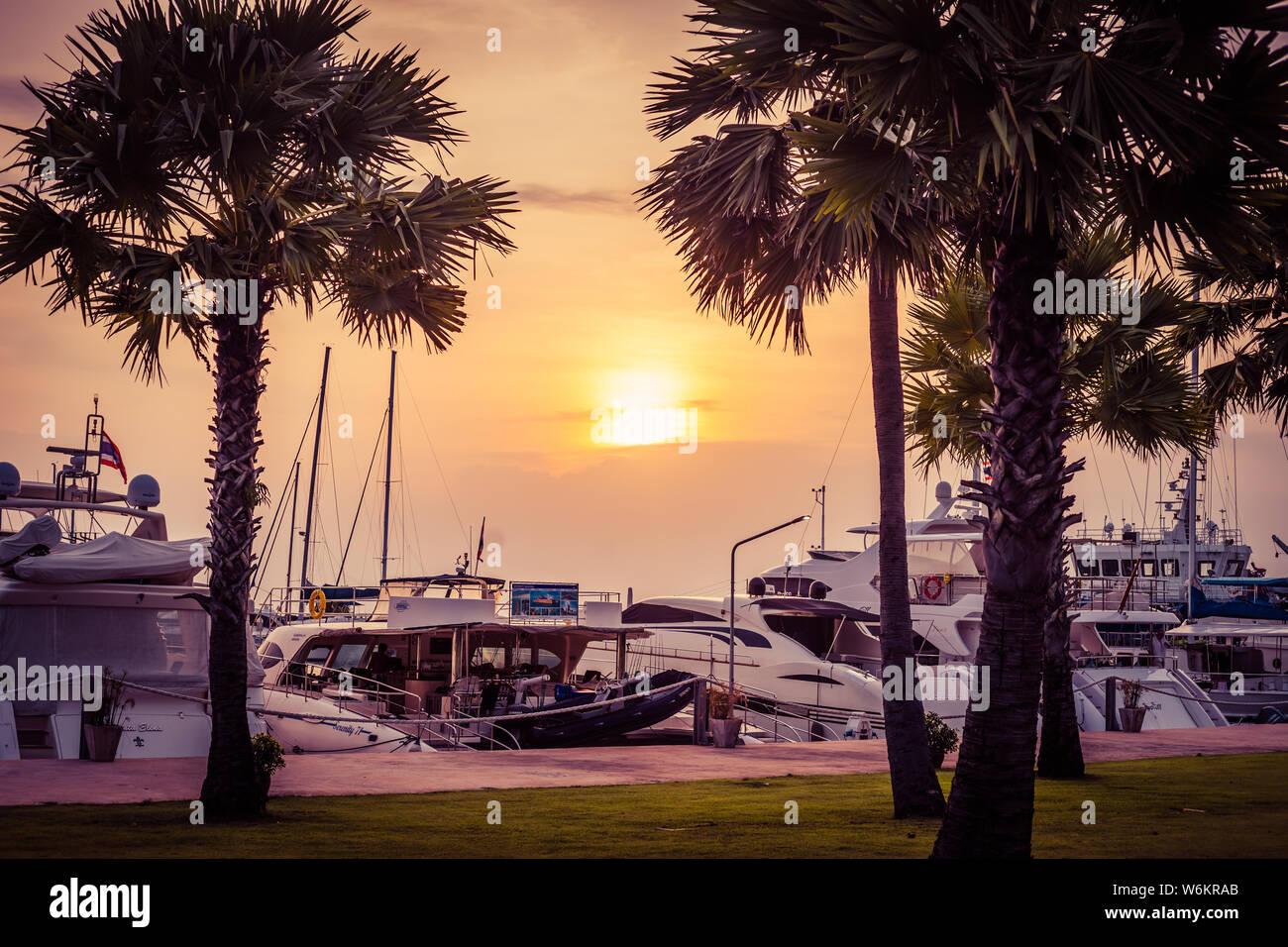 Pattaya Thailand May 28 2019 Luxurious Yachts Docked At