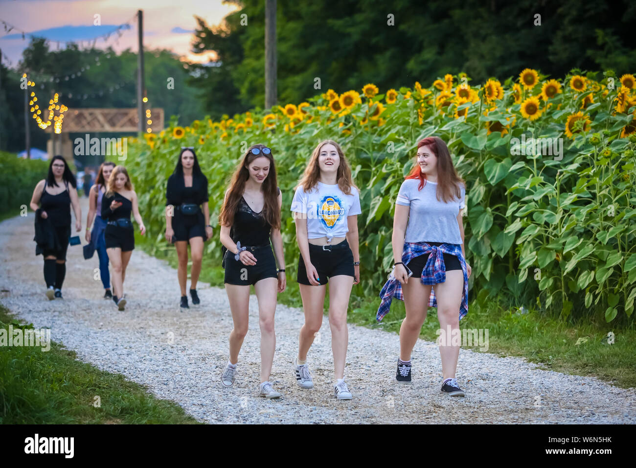 Brezje, Croatia - 20th July, 2019 : Young girls walking thru the field of sunflowers on the entrance to the Forestland, ultimate forest electronic mus Stock Photo