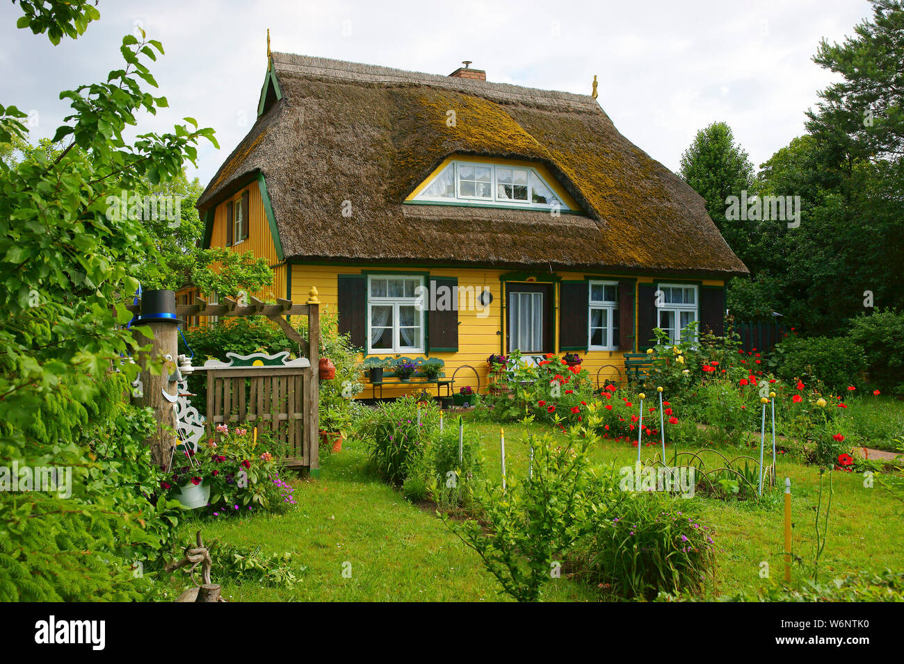 Traditional old house with a thatched roof and garden, Born, Darss, Mecklenburg-Western Pomerania, Germany Stock Photo