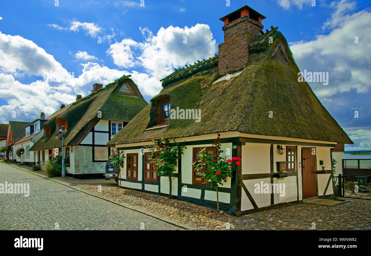 Traditional half-timbered houses with thatched roofs at village Maasholm, Schleswig-Holstein, Germany Stock Photo