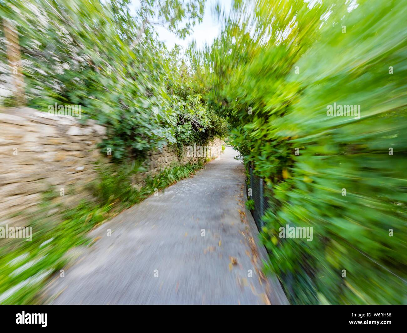 Green vegetation speeding on small road with stone wall on one side Stock Photo