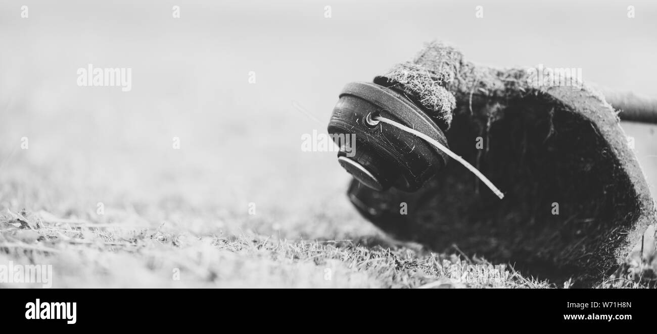 String trimmer on mown grass, close up. Theme of lawn care services, tool rental or repair. Banner format background with copyspace. Monochrome, matte Stock Photo