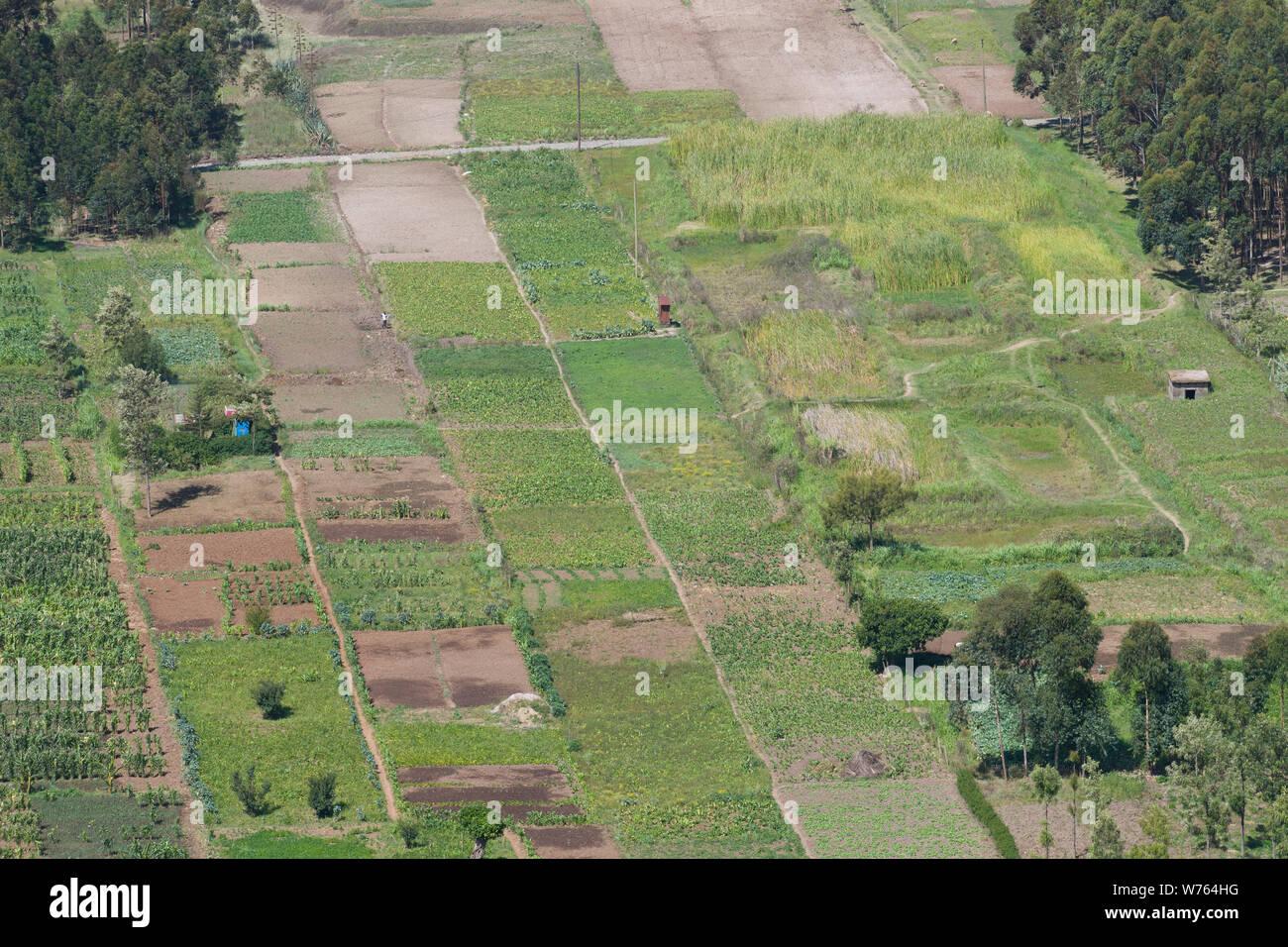 A patchwork of farmers field viewed from the Mahi Mahiu Longonot View Point, on A104 Nakuru - Nairobi road. Rift Valley, Kenya. Stock Photo