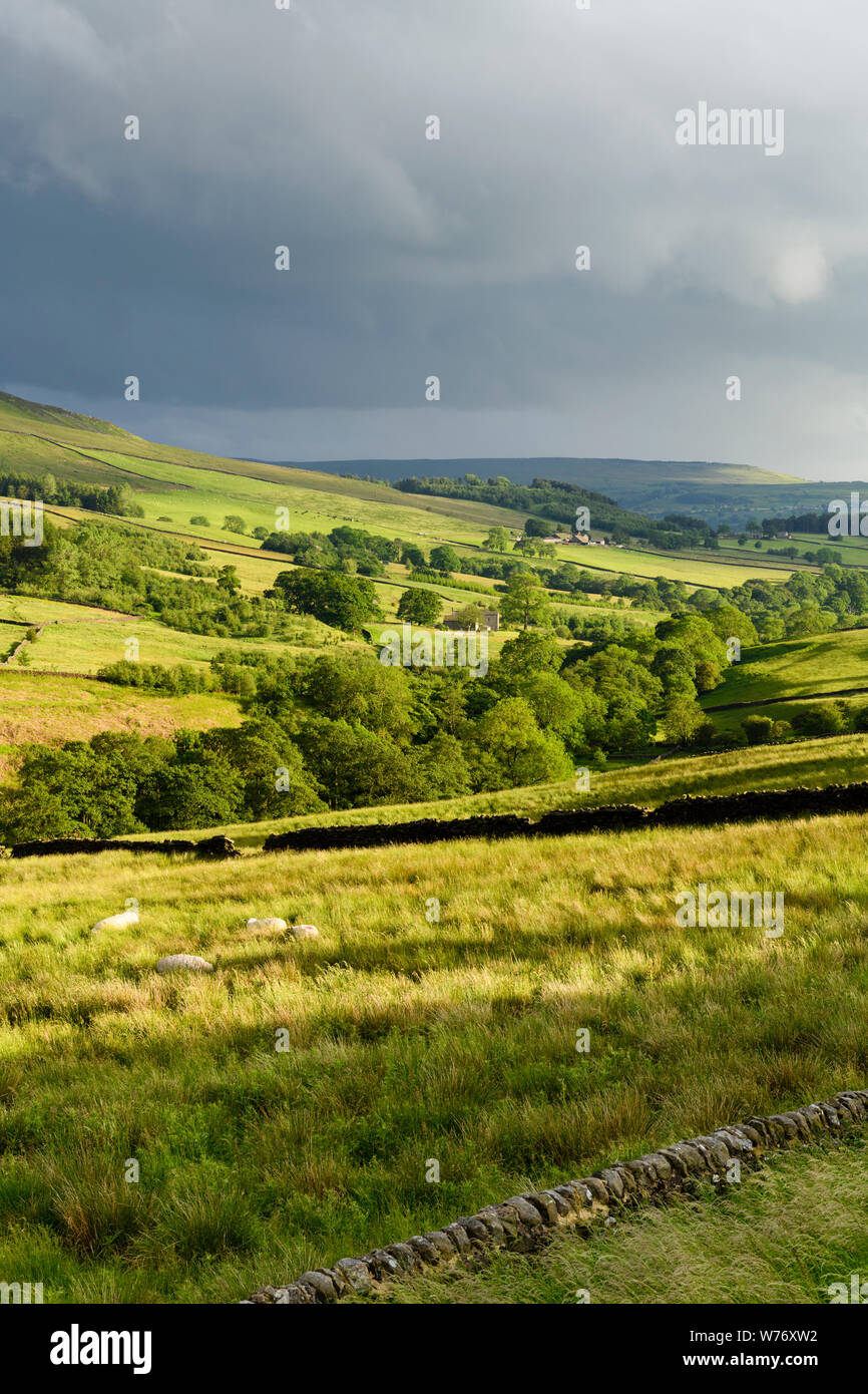 Dark cloudy sky & long-distance picturesque evening view to Wharfedale (rolling hills, green pasture, sunlit valley) - Yorkshire Dales, England, UK. Stock Photo