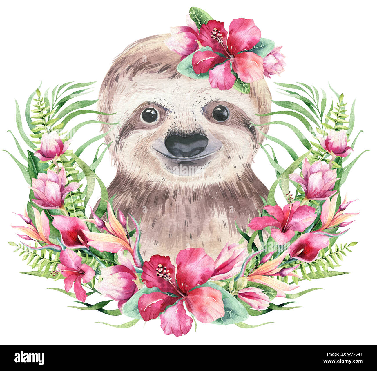 A Poster With A Baby Sloth Watercolor Cartoon Sloth Tropical Animal Illustration Jungle Exotic Summer Design Stock Photo Alamy
