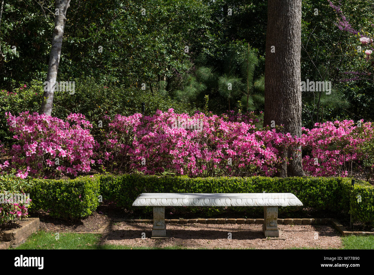 A Peaceful Place To Rest Among The Azaleas At The Bayou Bend
