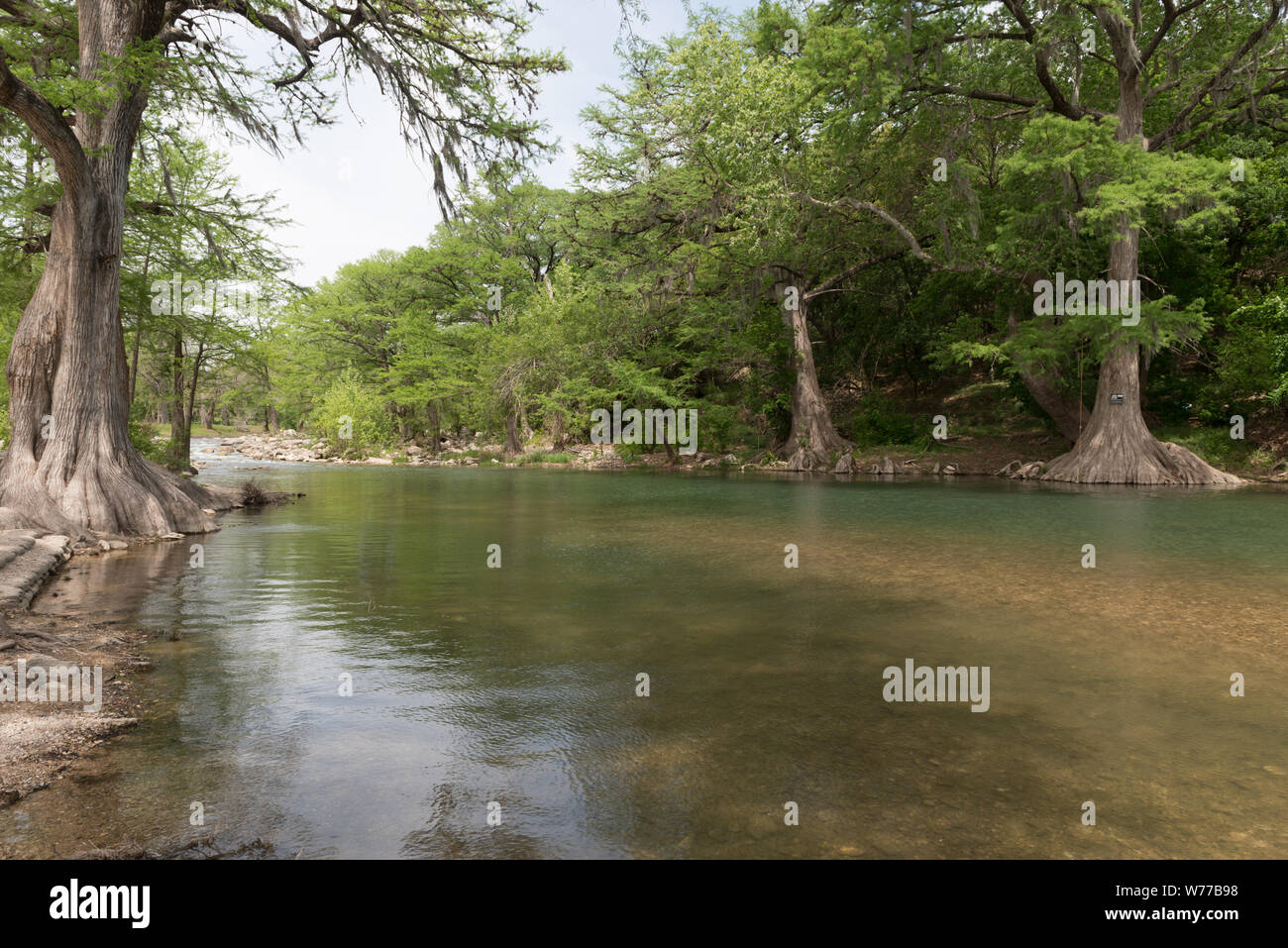 dating i nye Braunfels Texas