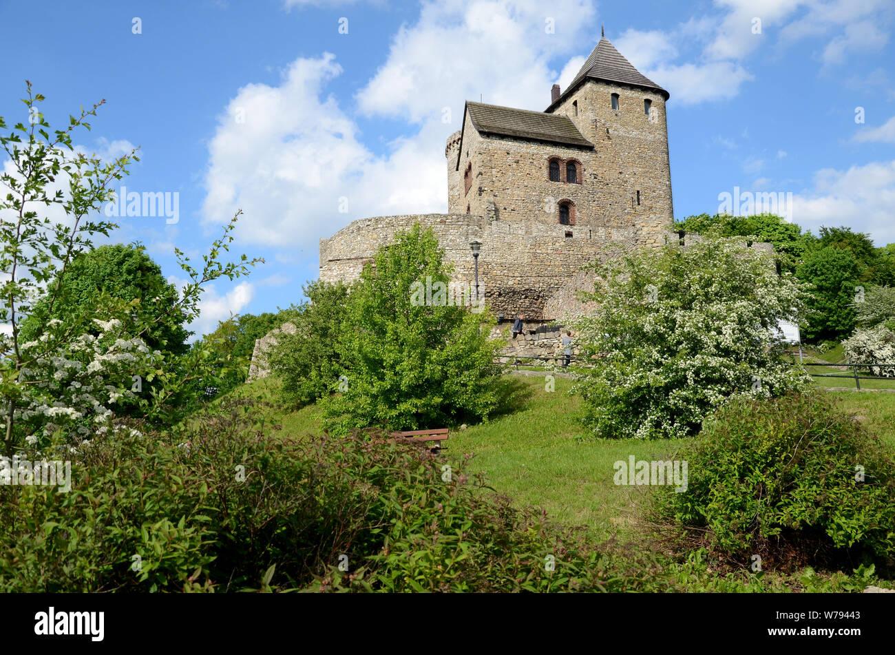 Old gothic castle (Bedzin in Poland) Stock Photo