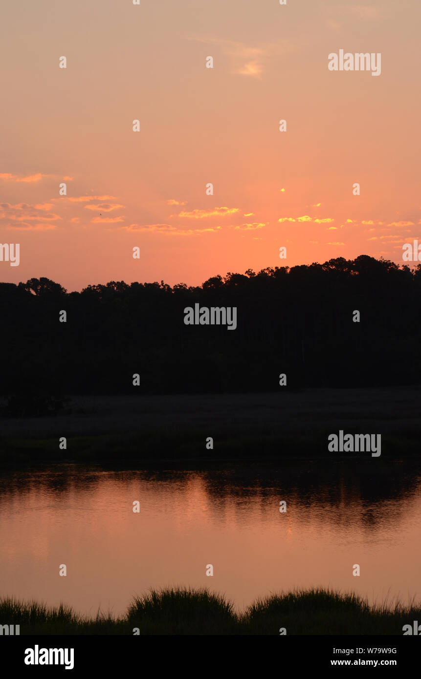 SOUTHERN PEACH SKIES A beautiful sunrise ascends above a forest off the Vernon river marsh in Savannah, Georgia. Stock Photo