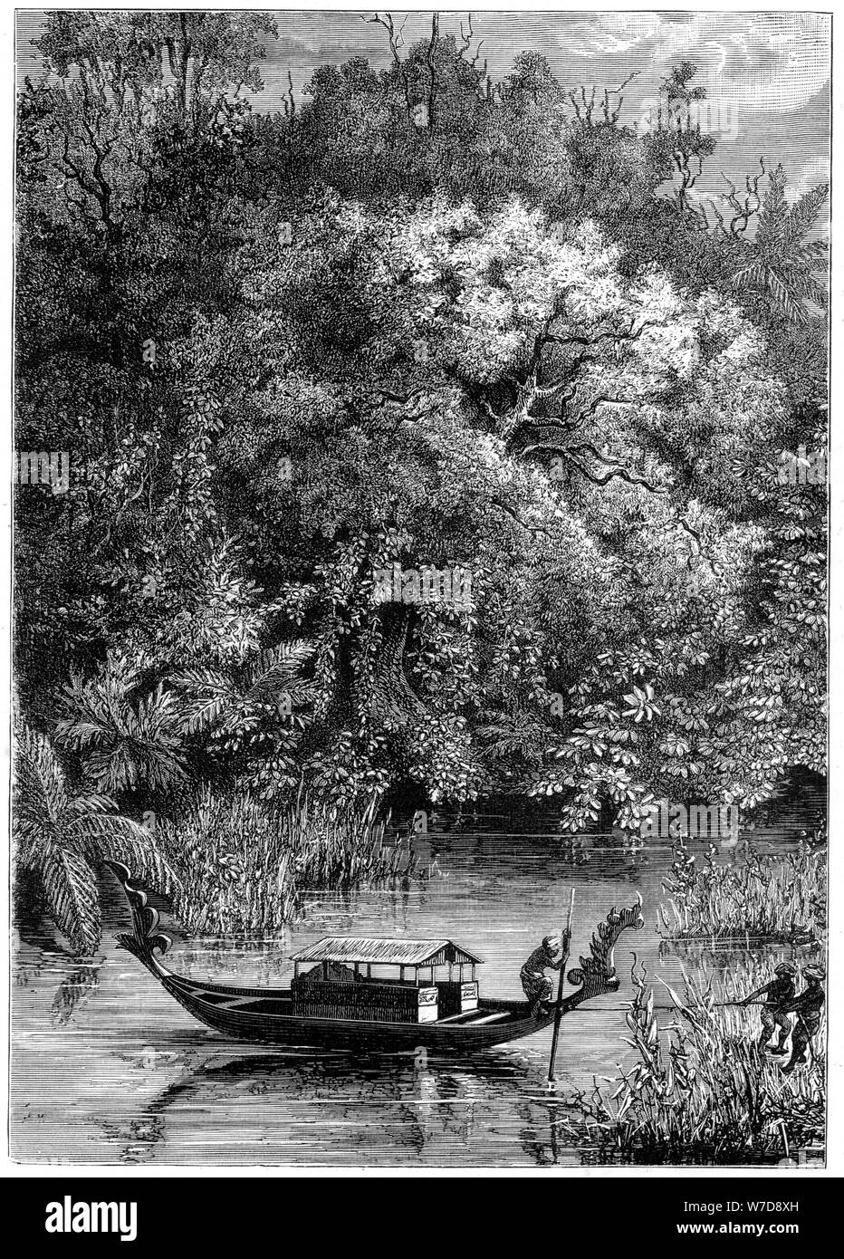 View on the Dodinga River, New Guinea, 1877. Artist: Unknown Stock Photo
