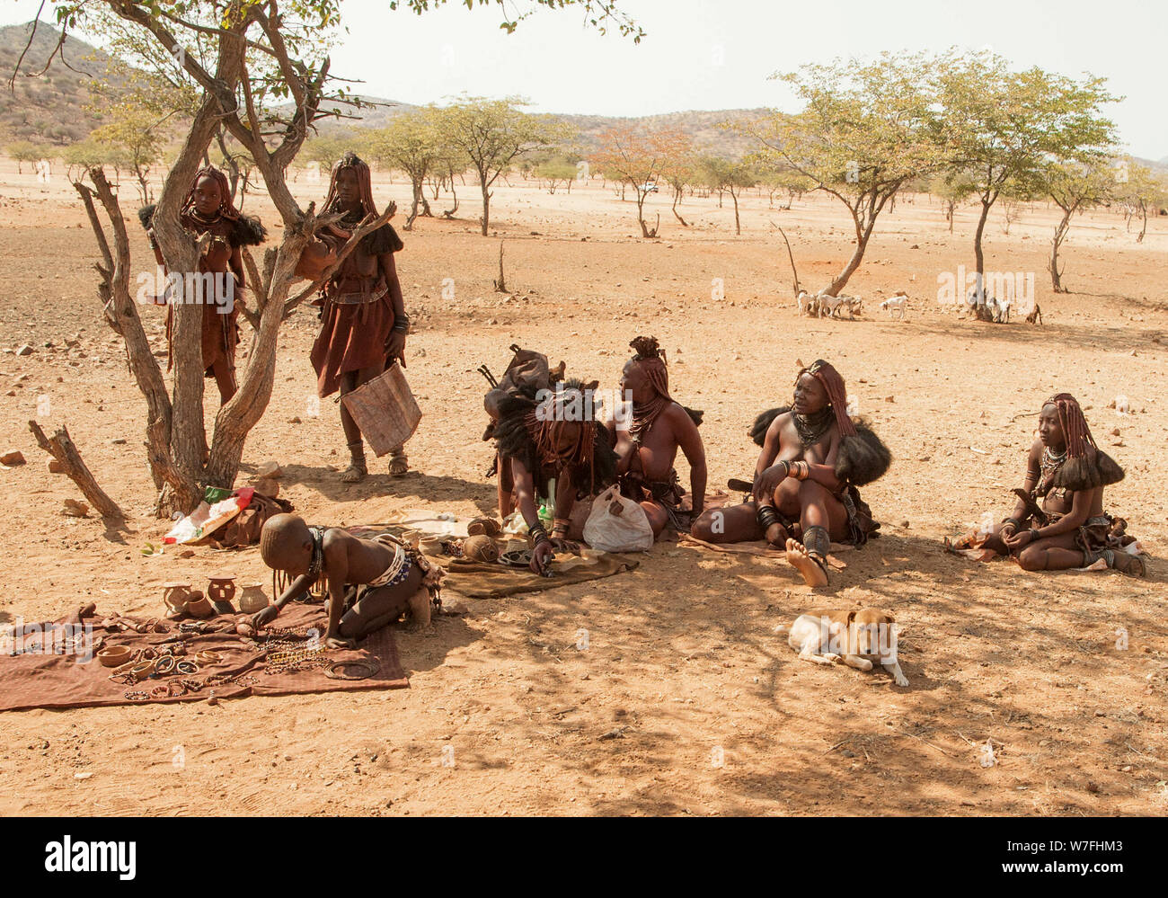 Himba tribe village, Kaokoveld, Namibia, Africa Stock Photo