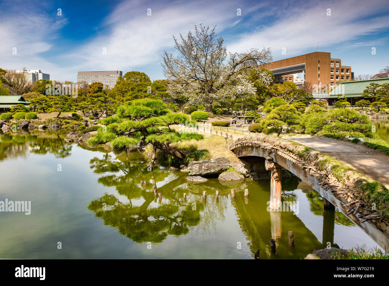 5 April 2019: Tokyo, Japan - Pond and bridge in Kiyosumi Garden, a traditional style landscape garden in Tokyo. Stock Photo