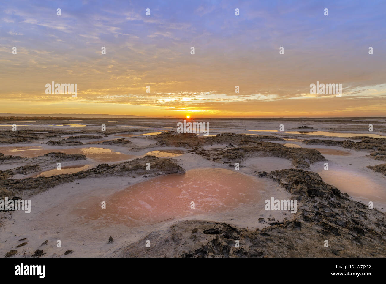 Dried Salt Marsh Colors in San Francisco South Bay Stock Photo