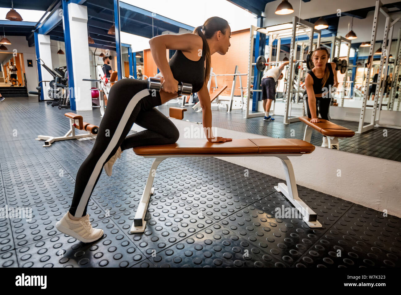 Back view young woman trains deltoid in front of gym mirror Stock Photo