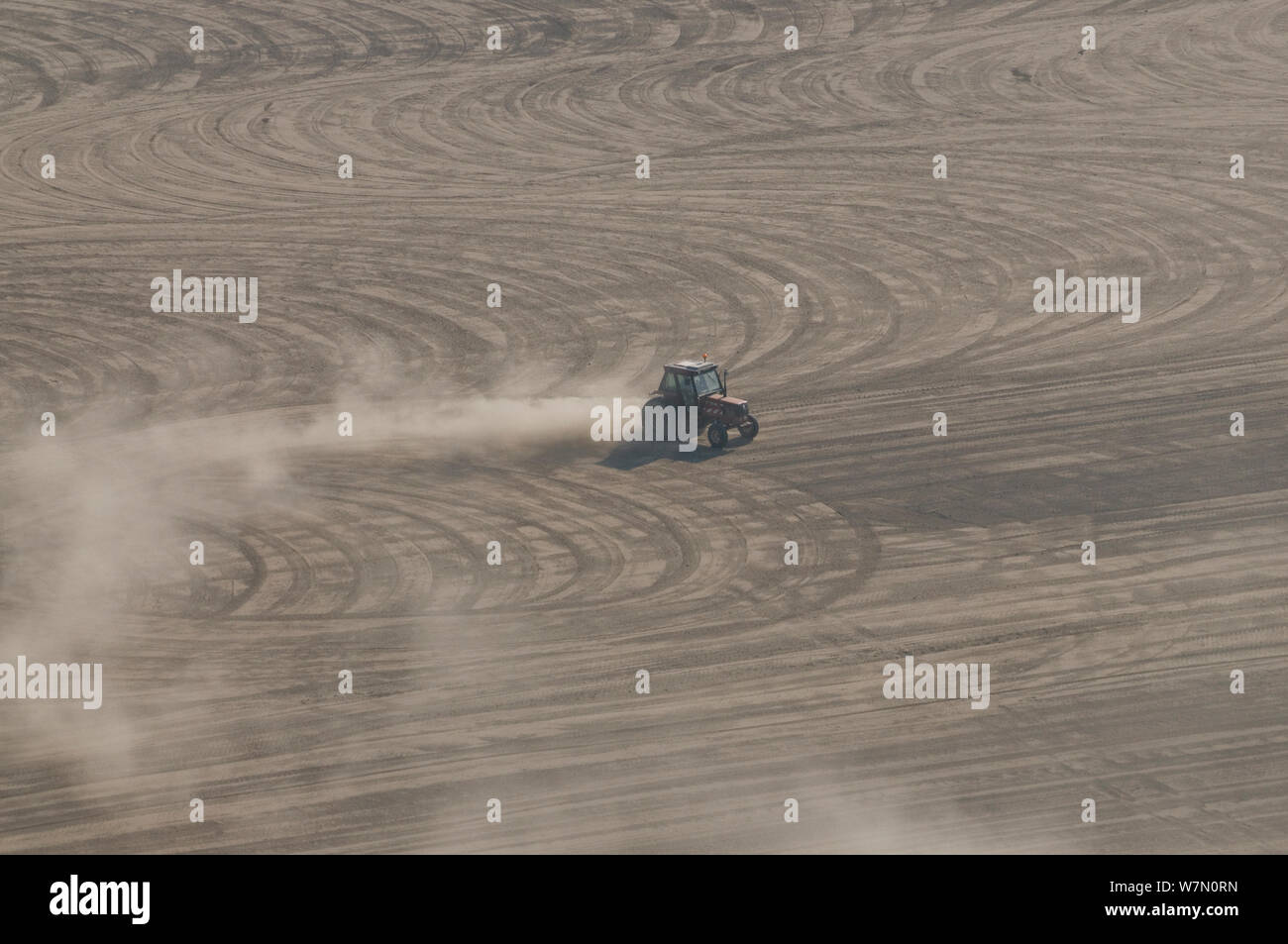 Aerial view of tractor levelling the rice field before sowing a new crop, Camargue, Southern France, September 2009 Stock Photo