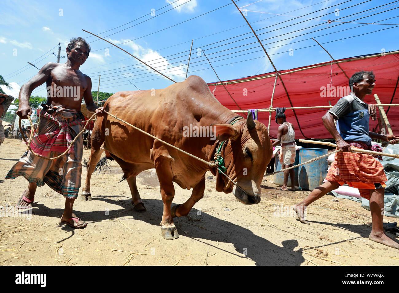 Dhaka, Bangladesh - July 06, 2019: Bangladeshi traders