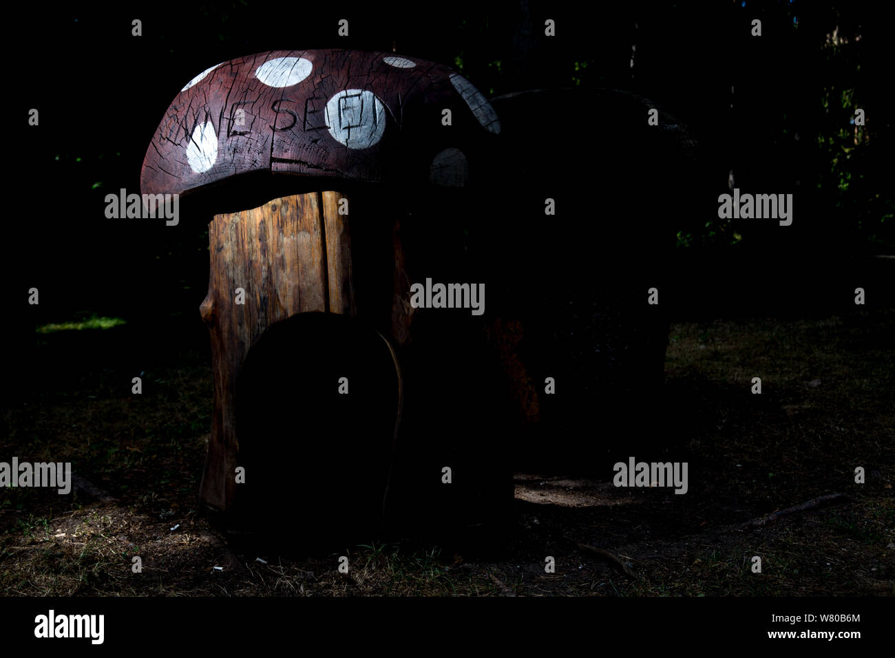 Wooden mushroom at night Stock Photo