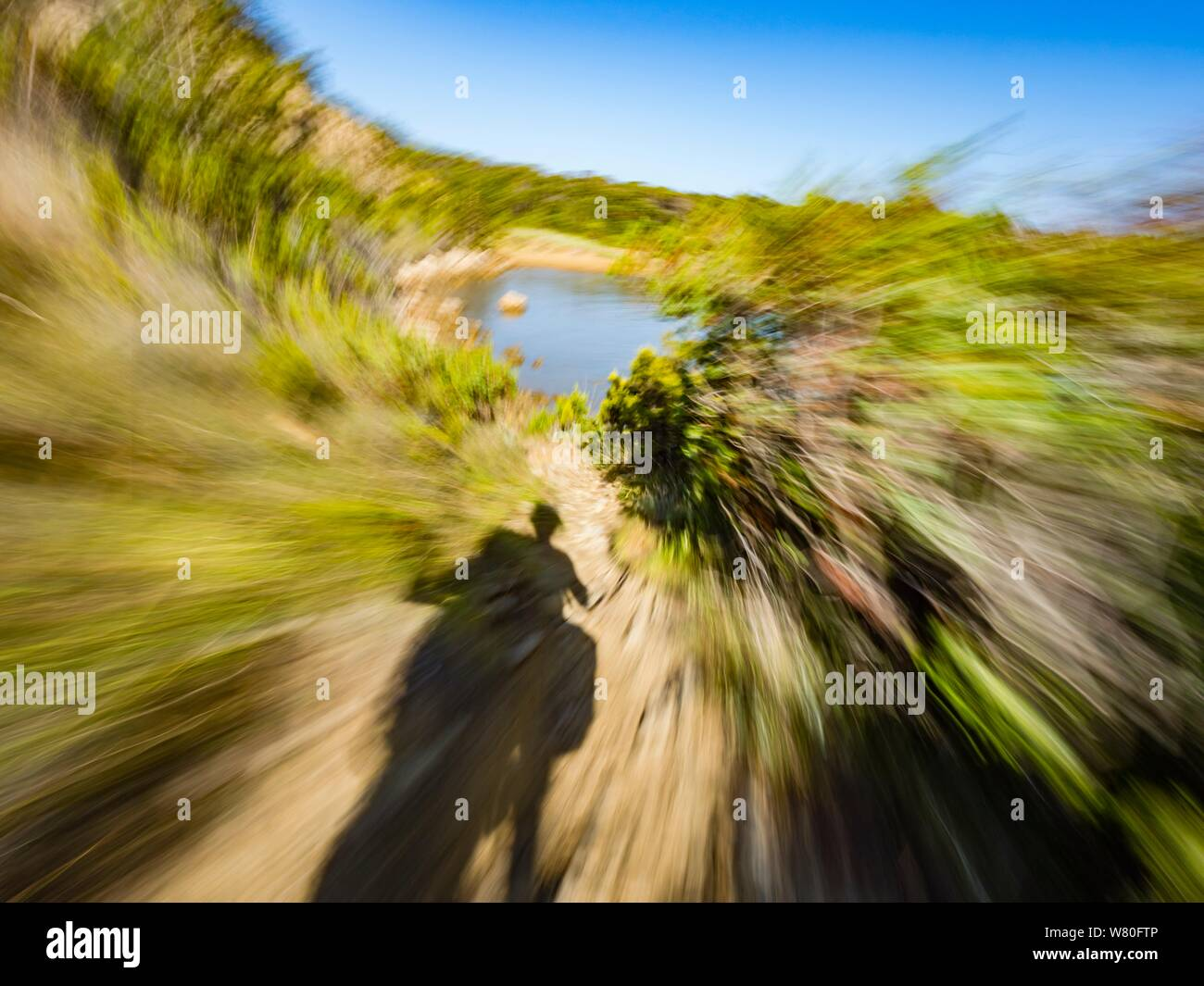 Rough terrain vacated vacant countryside speeding low view along Green tree bushes branches foliage circular twirl motion aka driving motorcycle Stock Photo