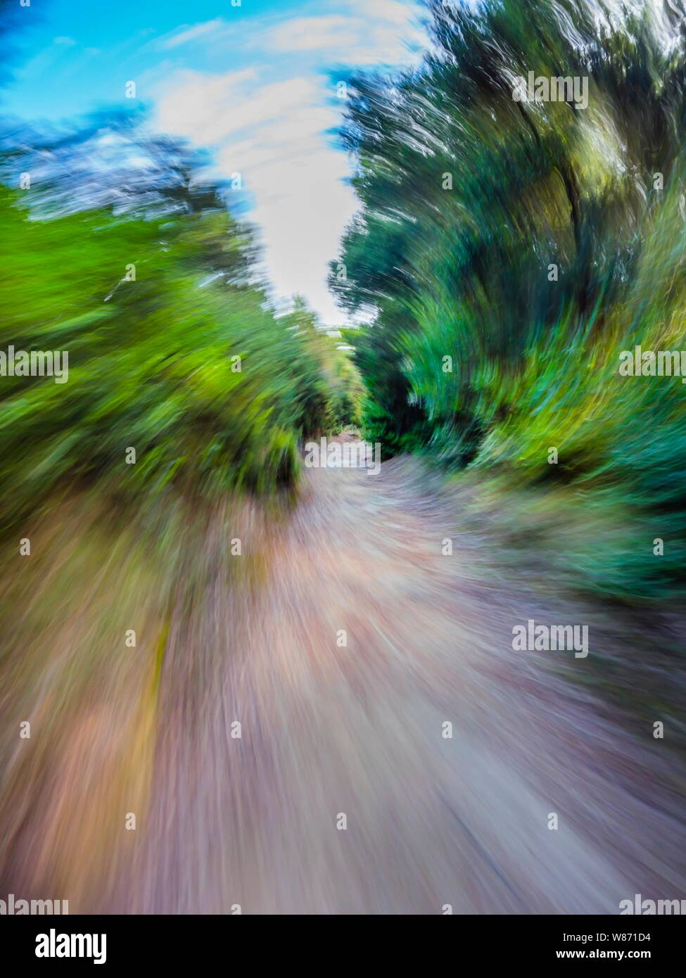 Green forest countryside path pathway speeding through dense trees dizzy circular twirl motion Stock Photo