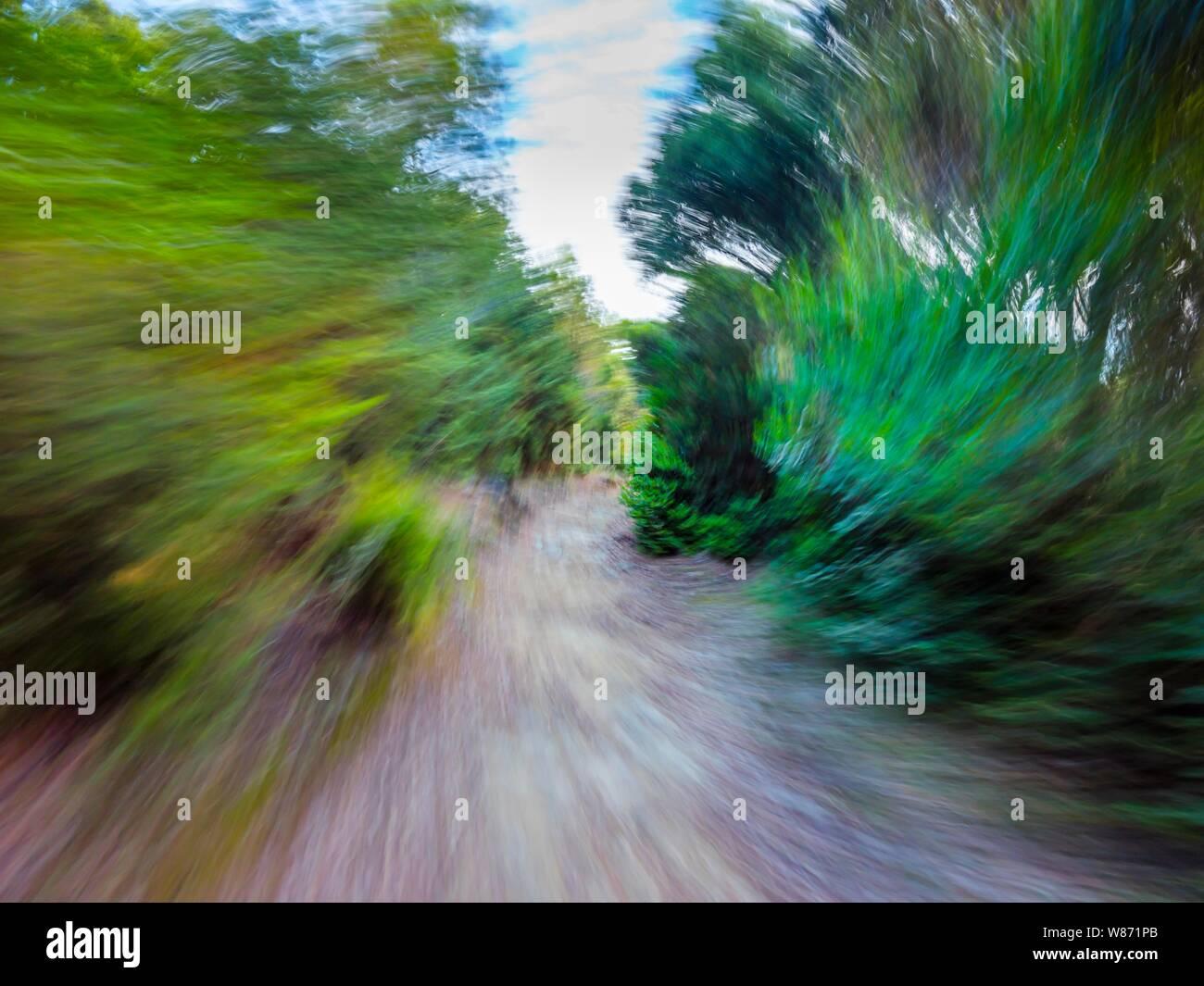 Green forest countryside path pathway speeding through dense trees circular twirl motion Stock Photo