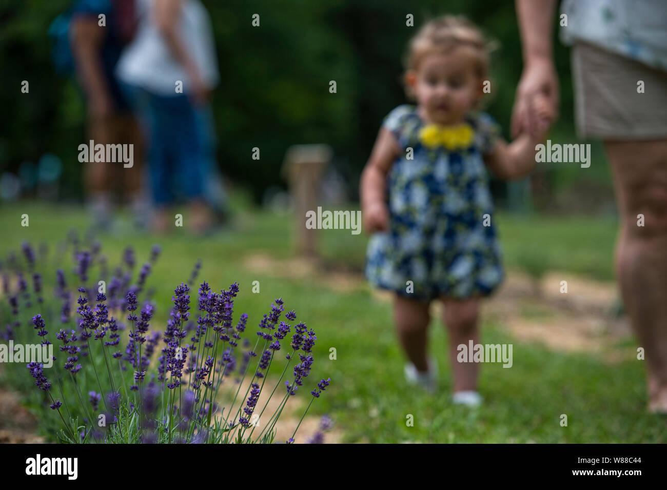 The Landscape Stock Photos & The Landscape Stock Images