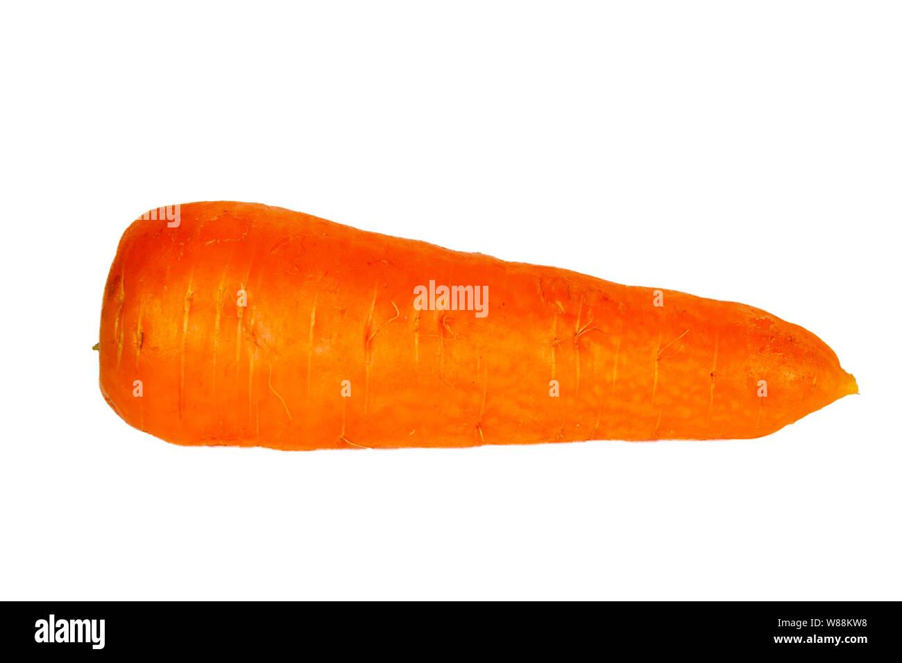 Fresh, big carrot, isolated on white background Stock Photo   Alamy