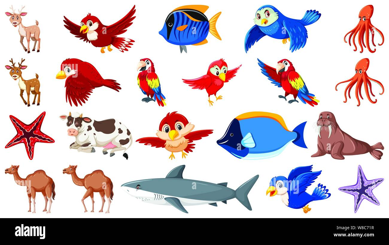 Set Of Different Types Of Sea Animals And Birds Illustration Stock Vector Image Art Alamy