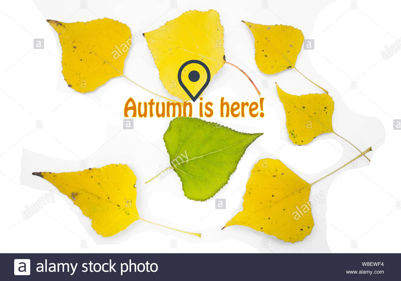 image with yellow leaves, fallen from trees, GPS symbol and message Fall is here Stock Photo