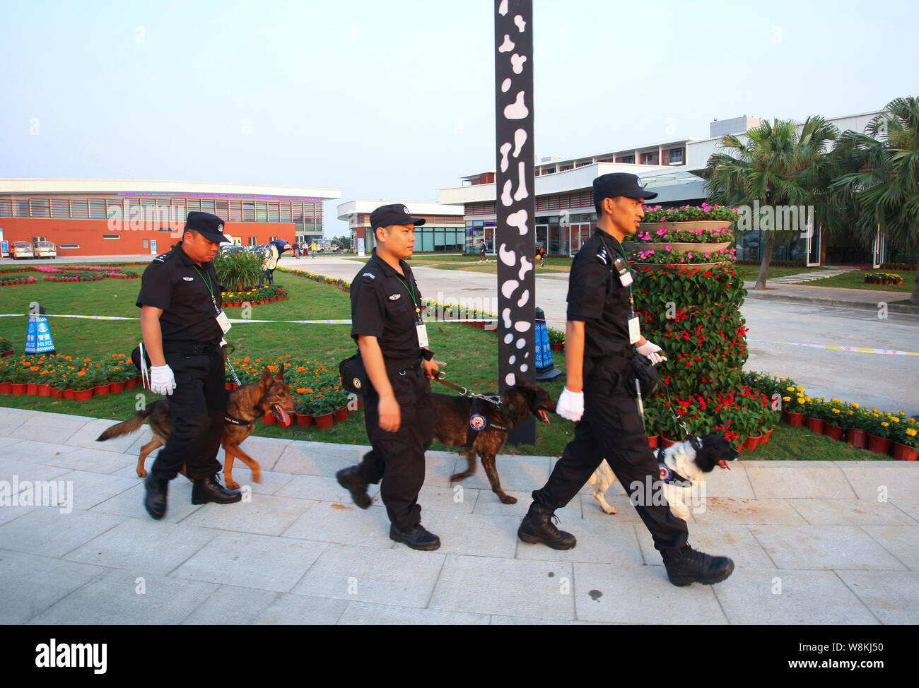 Security guards and dogs patrol the BFA International