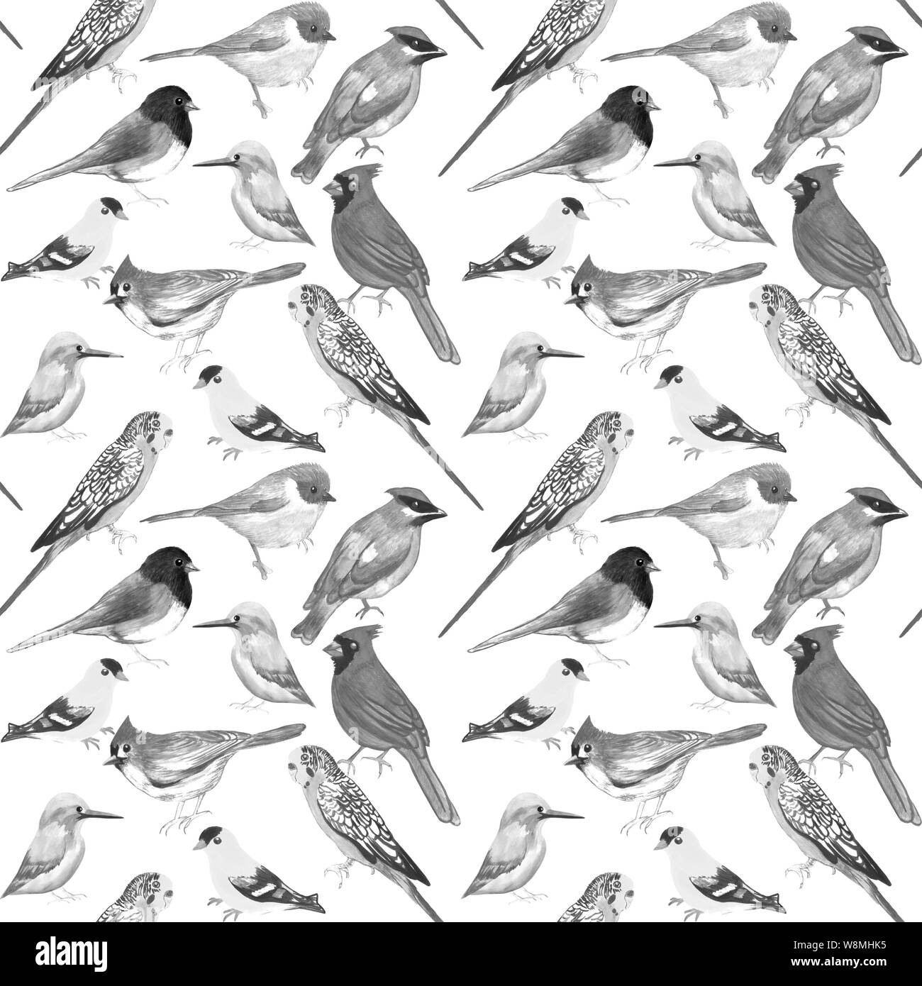 Black and white birds against white background seamless artwork Stock Photo