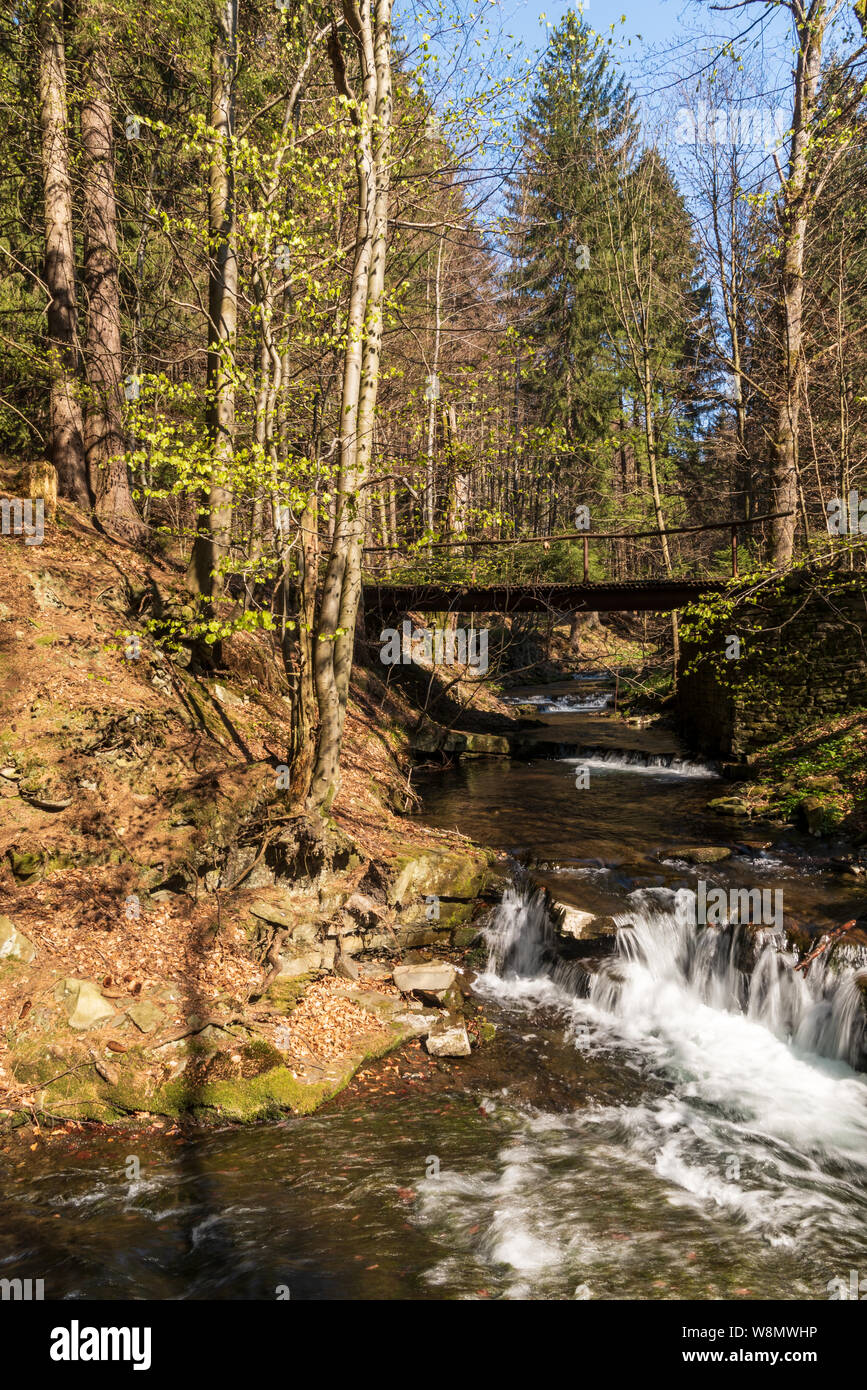 Blatny potok creek above Moravka village with small water cascades, bridge above, trees around and clear sky in Moravskoslezske Beskydy mountains in C Stock Photo