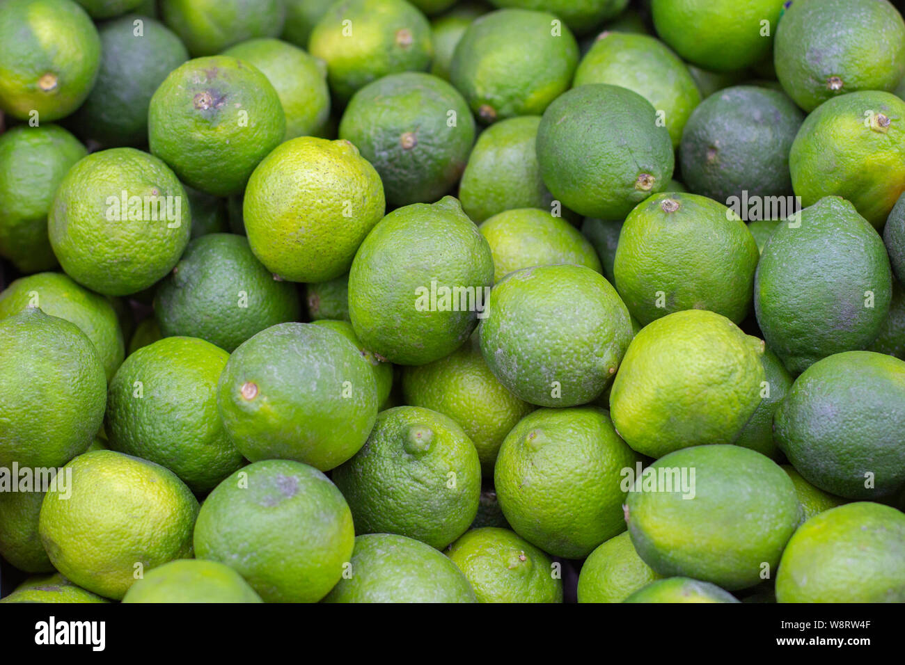 Many Fruits Citrus Lime Green Sour Ripe Lemon Lime Background