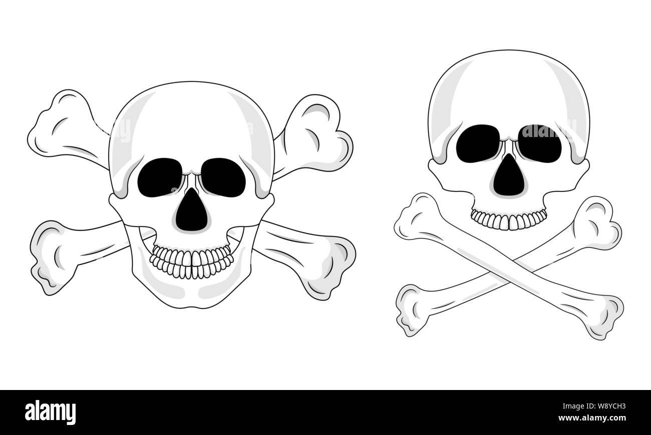 Cartoon White Bone