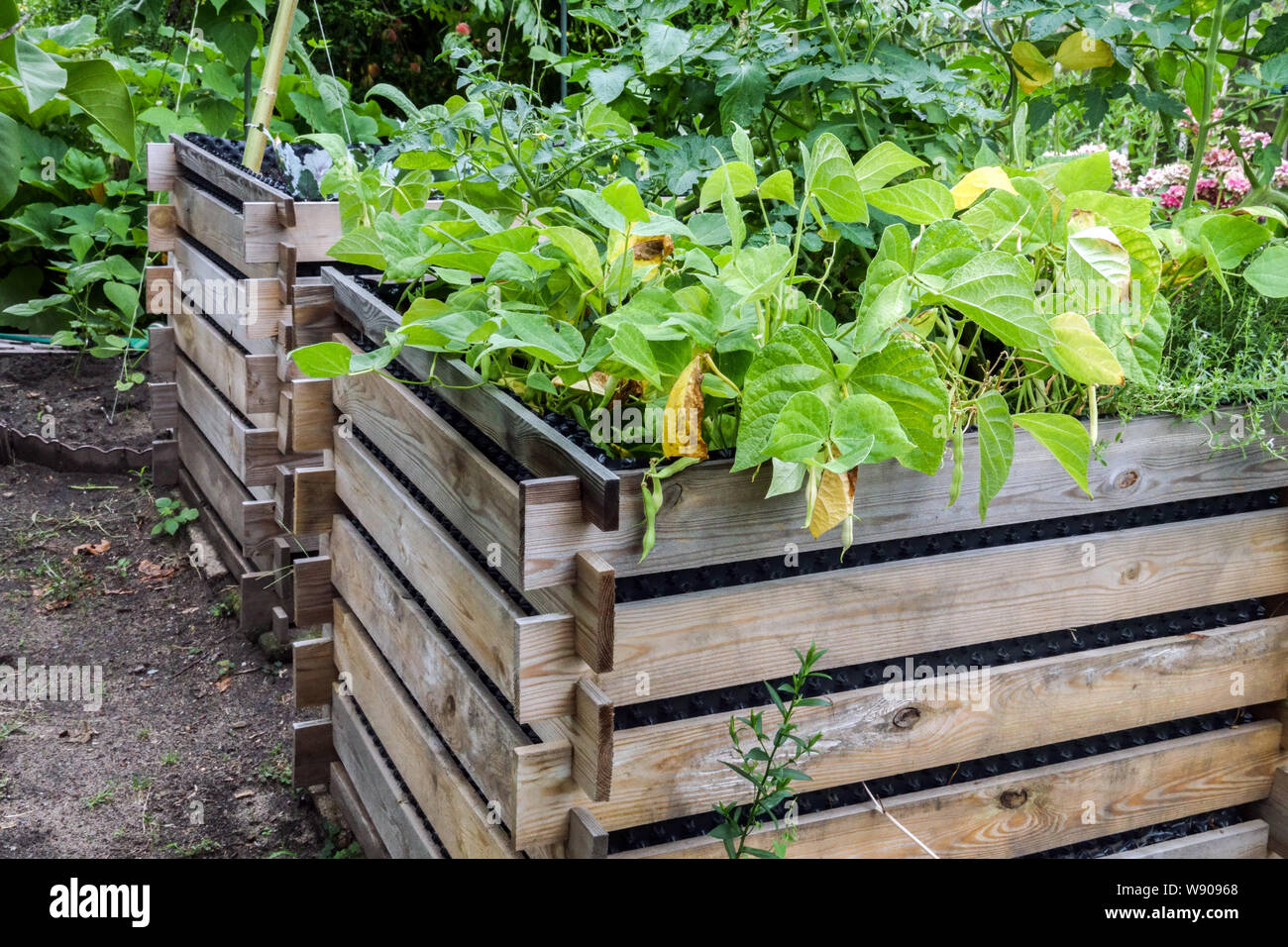 Two wooden composters placed in the shady part of the garden Stock Photo