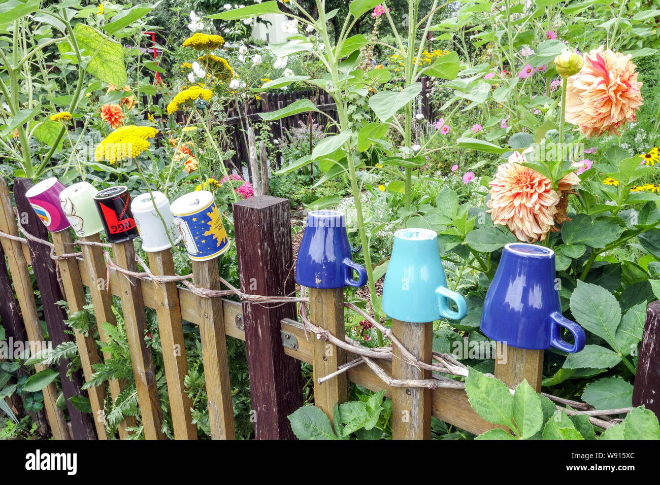 Wooden Garden Fence In The Overgrown Garden With Colorful Mugs On