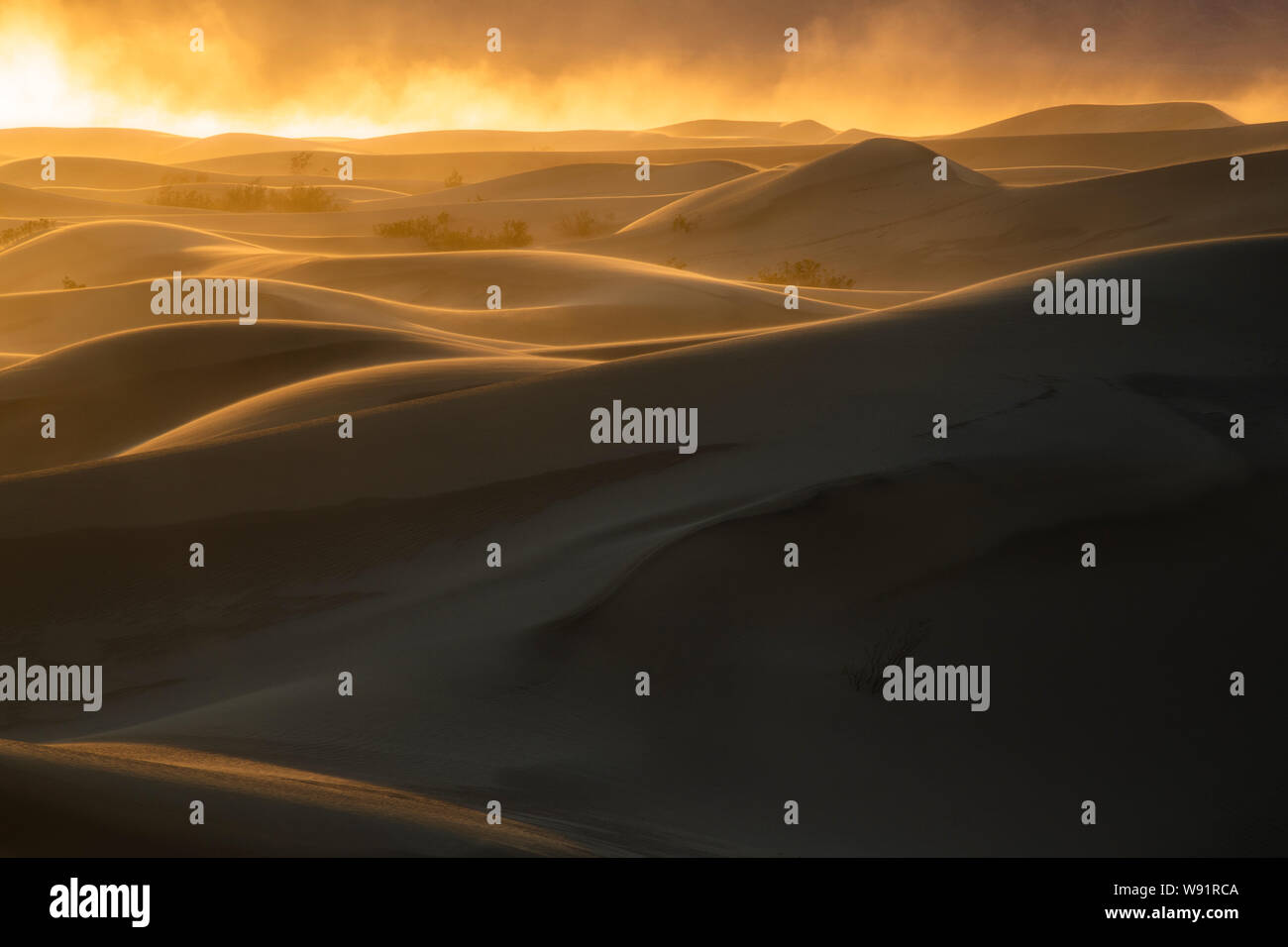 Sandstorm at sunset, Mesquite Dunes, Death Valley National Park, California Stock Photo