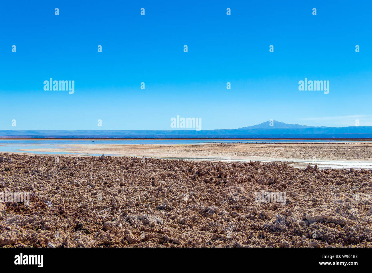Chaxa Lake (Laguna Chaxa) with reflection of surroundings and blue sky in Salar of Atacama, Chile Stock Photo
