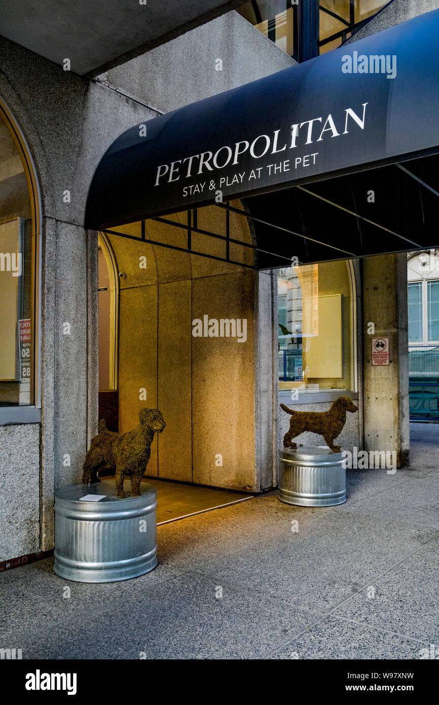 Dog Boarding Stock Photos & Dog Boarding Stock Images - Alamy