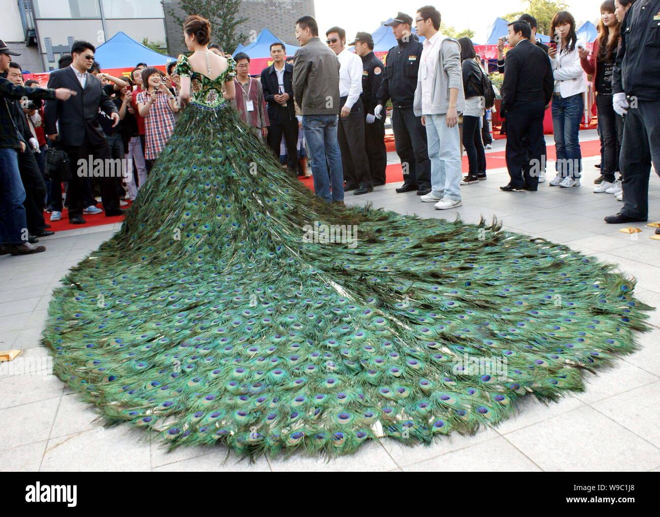 Peacock Wedding Veil Off 74 Buy
