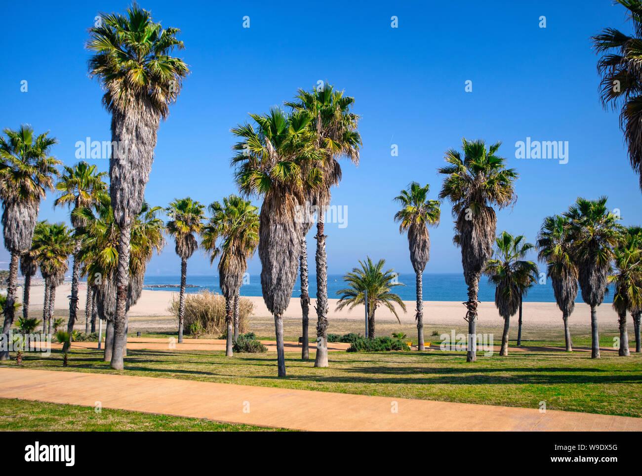 Barcelona City, Diagonal Mar District, Besos Beach. Stock Photo
