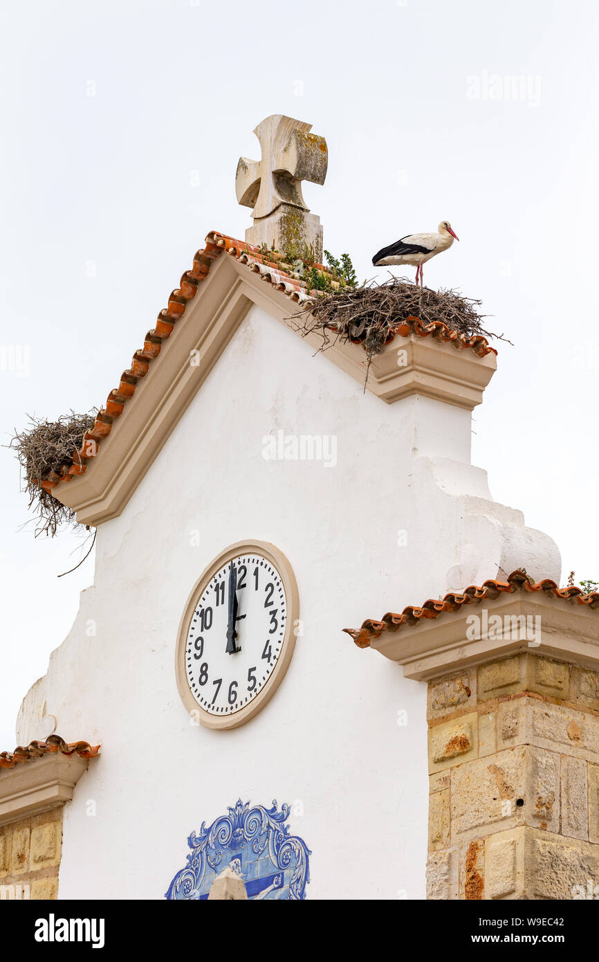 Nest Of A White Stork Ciconia Ciconia On A Church Roof In