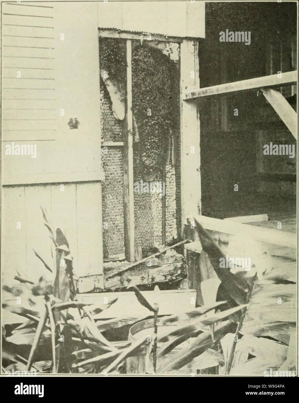 Until 1907 Stock Photos & Until 1907 Stock Images - Alamy
