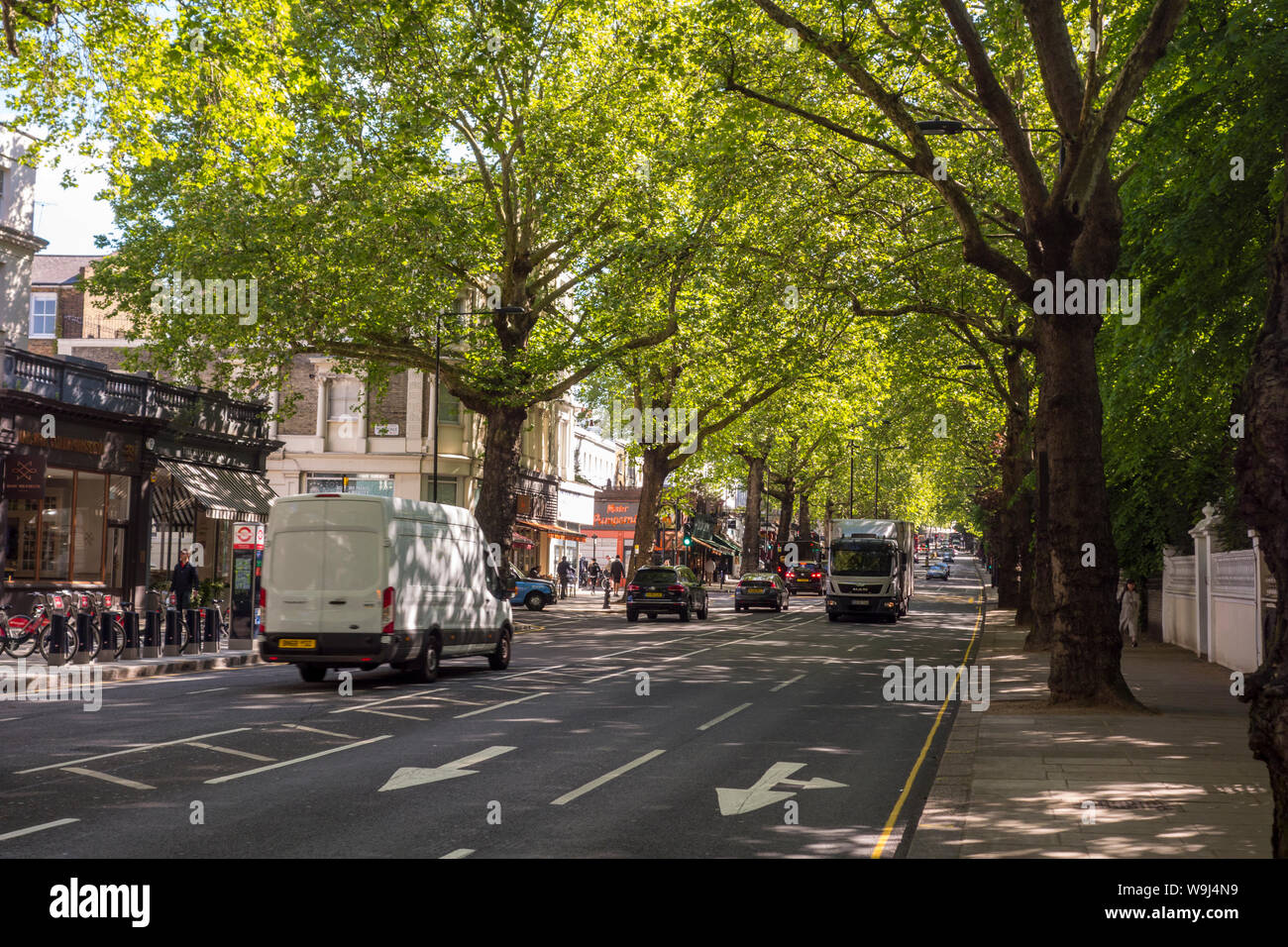 Traffic on tree lined Holland Park Avenue, Royal Borough of Kensington and Chelsea, London, UK - Holland Park Avenue London Stock Photo