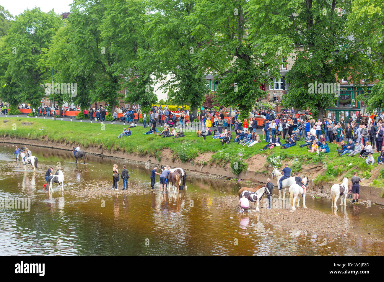 Appleby-in-Westmorland, Cumbria, England.  The Appleby Horse Fair, an annual gathering of Gypsies and Travellers and their horses. Stock Photo