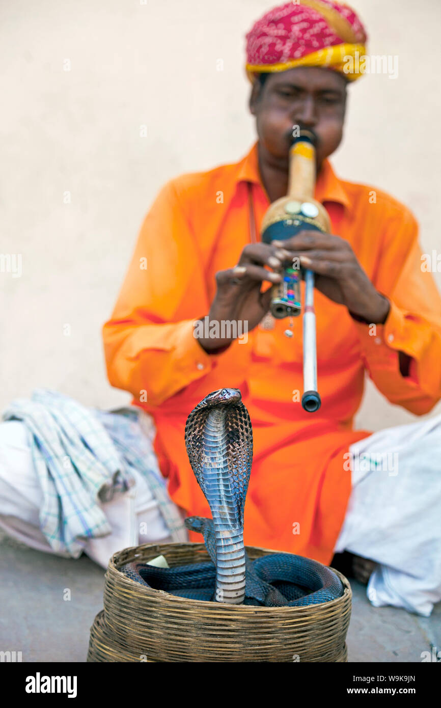 Cobra snake charmer outside the City Palace, Jaipur, Rajasthan, India, Asia Stock Photo